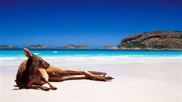 Work and Holiday Australia, requisitos y pasos a seguir para solicitarla, 1.500 plazas para el 2017