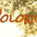 blog-polonia