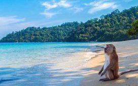 Vivir en Tailandia sin trabajar