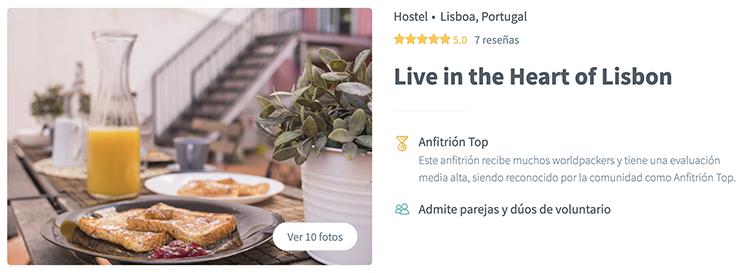 Voluntariado hostel Lisboa